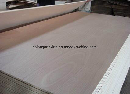 Construction and Furniture Grade Film Faced Plywoods