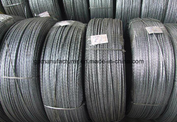 Hot Dipped Galvanized Steel Strand