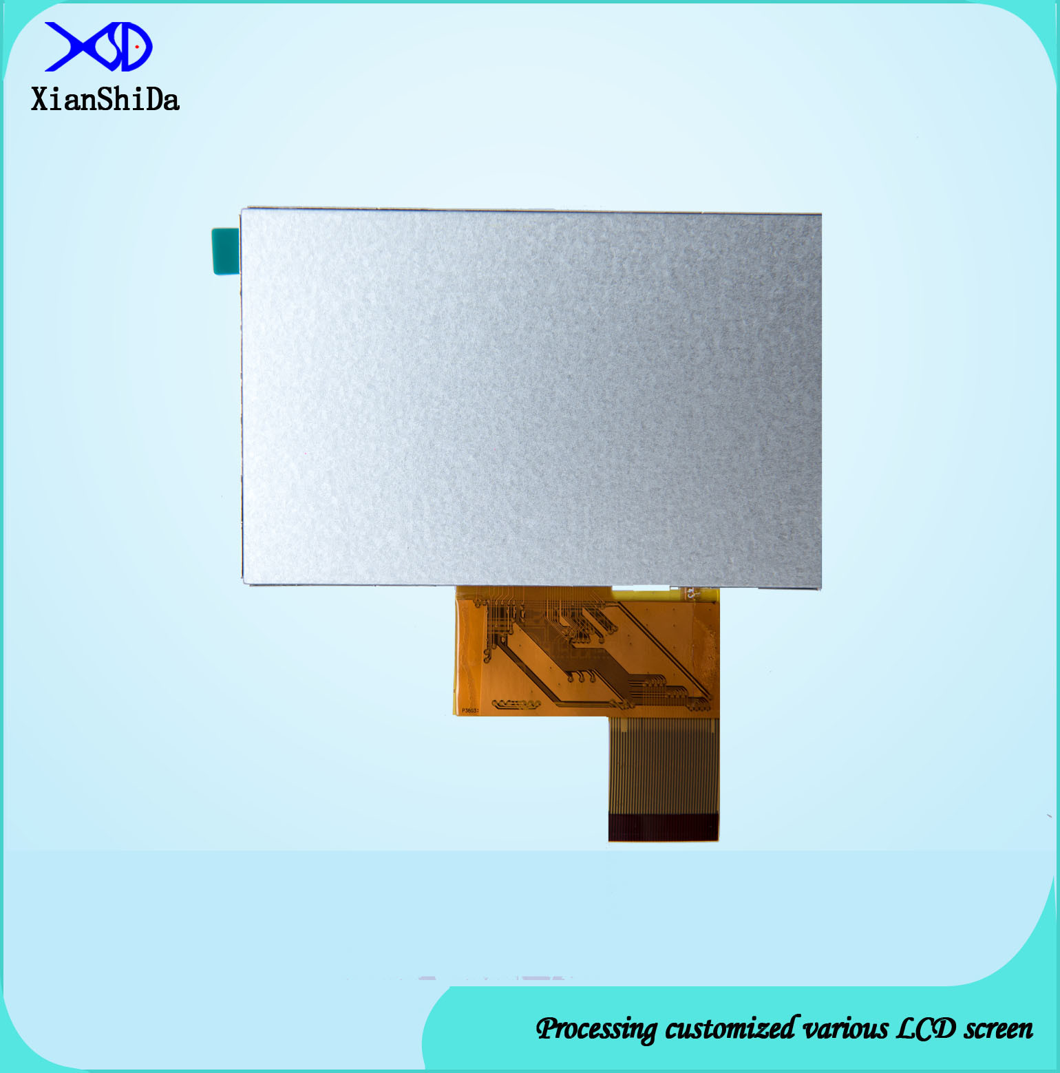 4.3 Inch LCD Screen with 450 CD/M2 Brightness