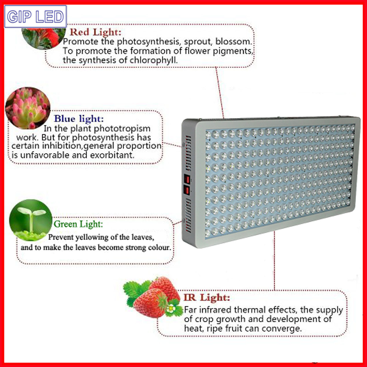 300W-1200W Greenhouse/Medical Plants LED Grow Lights for Wholesales