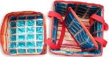 Fashion Cooler Bag, Ice Bag for Picnic, Cooler Lunch Bag