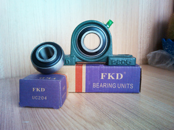 Fkd/Fe/Hhb 2 Hole Pillow Block Bearing/Bearing Units (UCP206)