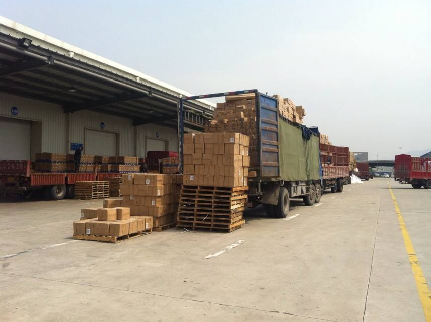 Ocean Freight From Shanghai to Vancouver/Canada