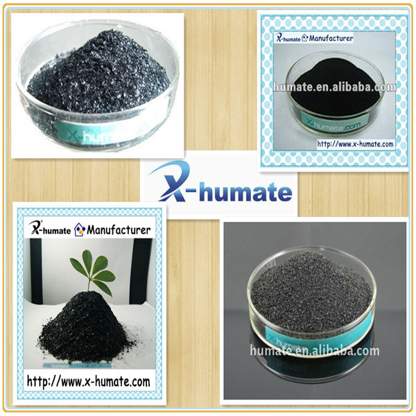Potassium Humate From Leonardite