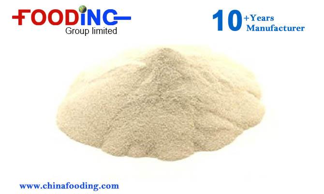 Bulk High Purity Amino Acid Powder L-Glutamic Acid with Good Price