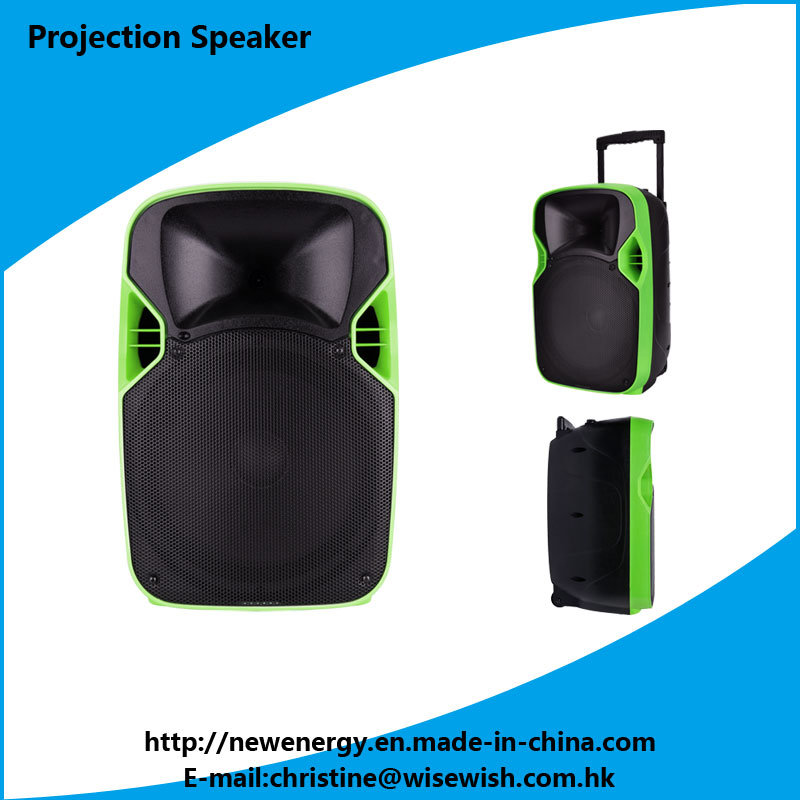 National Quality Professional Active 2.0 Stage PRO Audio Projection Speaker