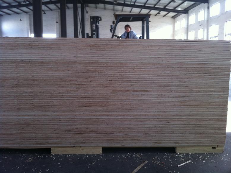 Marine Plywood (BS1088)