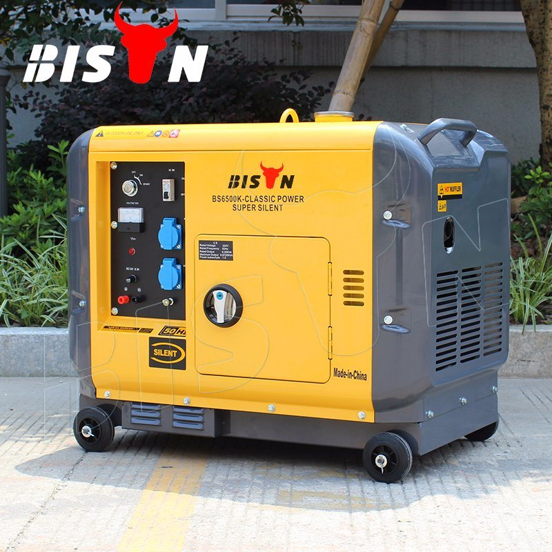 Bison Ce Certificated Portable Silent Generator Diesel 3kVA with Price