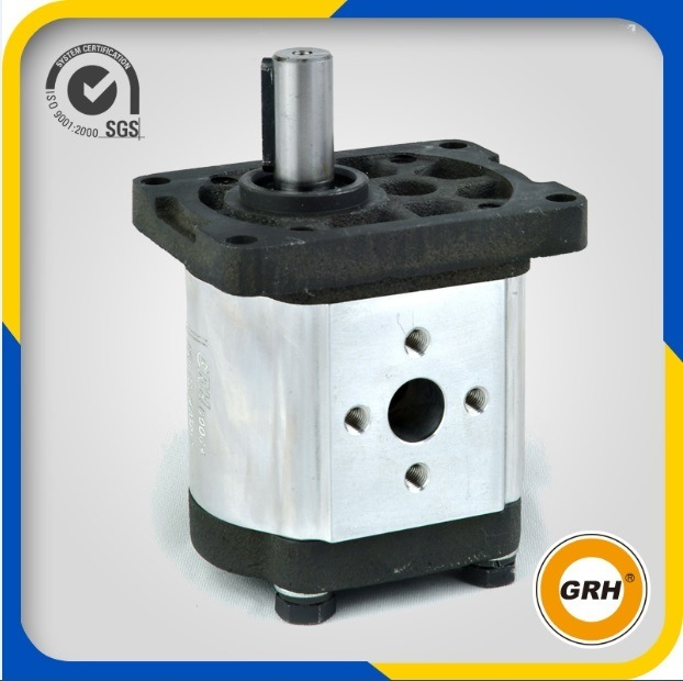 Group 2 High Pressure Hydraulic Gear Motor for Centrifugal Pump