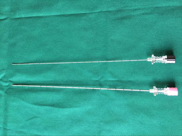 Percutaneous Chiba Needle Puncture Needle