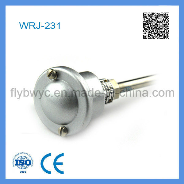 Wrj-231 Water-Proof Connection Box Thermocouple