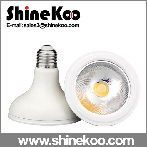 COB Waterproof IP64 12W LED PAR30 Lamp