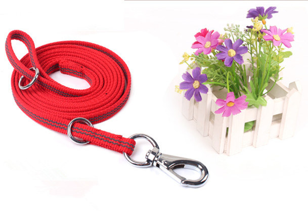 Pet Products Supply Dog Leash (L001)