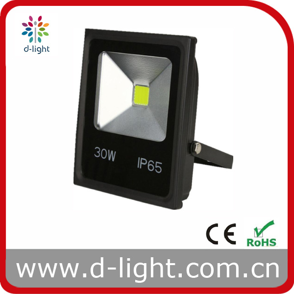 High Power IP65 Outside Use 30W LED Floodlight