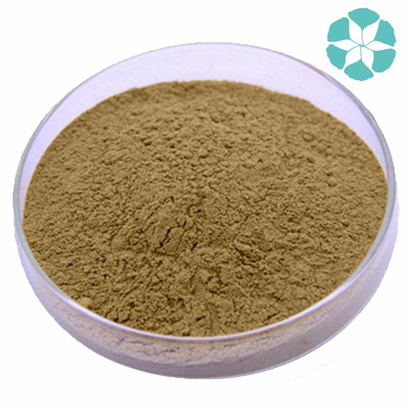 Fructus Cnidii Extract / Cnidium Monnieri Extract / Osthole
