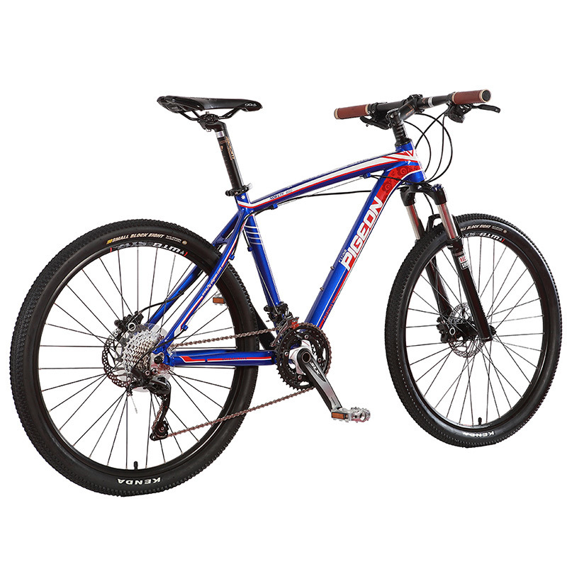 High Grade 30 Speed Mountain Bike Cameron Style MTB (FP-MTB-A03)