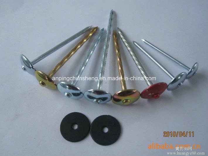 Africa Market Popular Roofing Nails with Rubber
