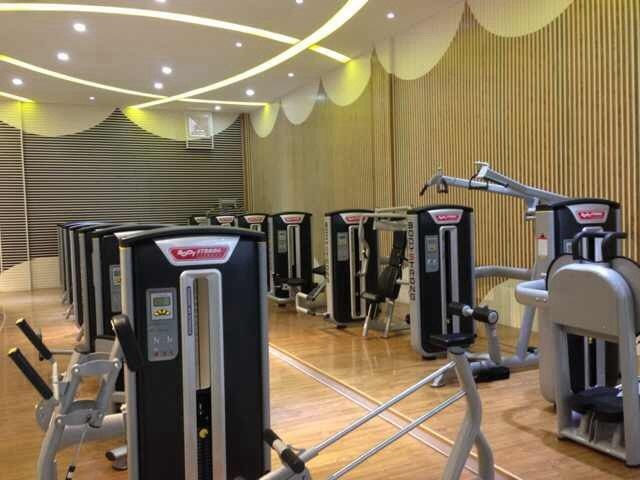 New Arrival Elliptical Cross Trainer Ft-6809 Gym Equipment