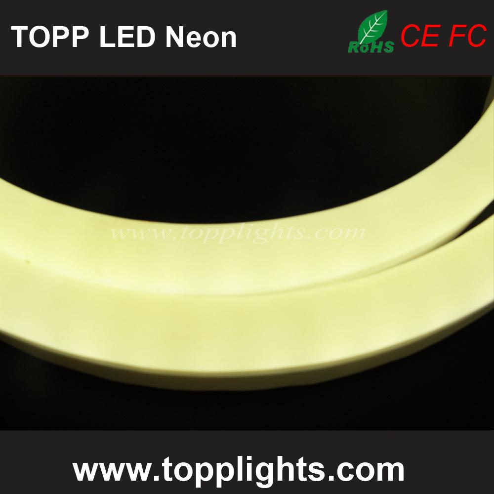 230V 120V 24V 12V Warm White LED Flex Neon Lights
