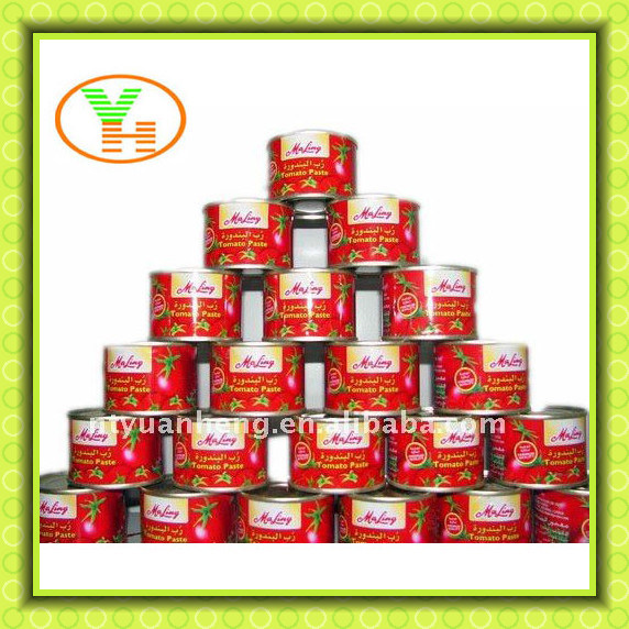 Canned Food Tomato Paste Gino