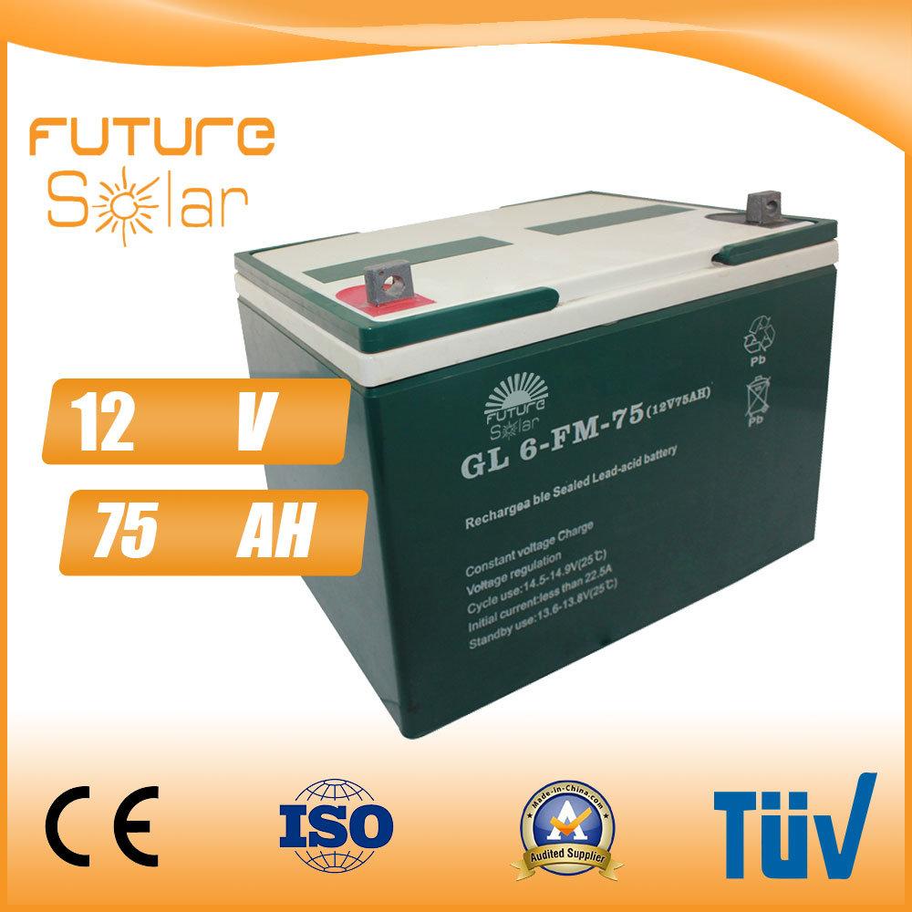 Futuresolar Lead Acid Battery 12V 75ah Solar Panel Rechargeable Battery