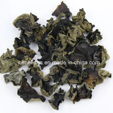 Dried Long Quan Black Fungus