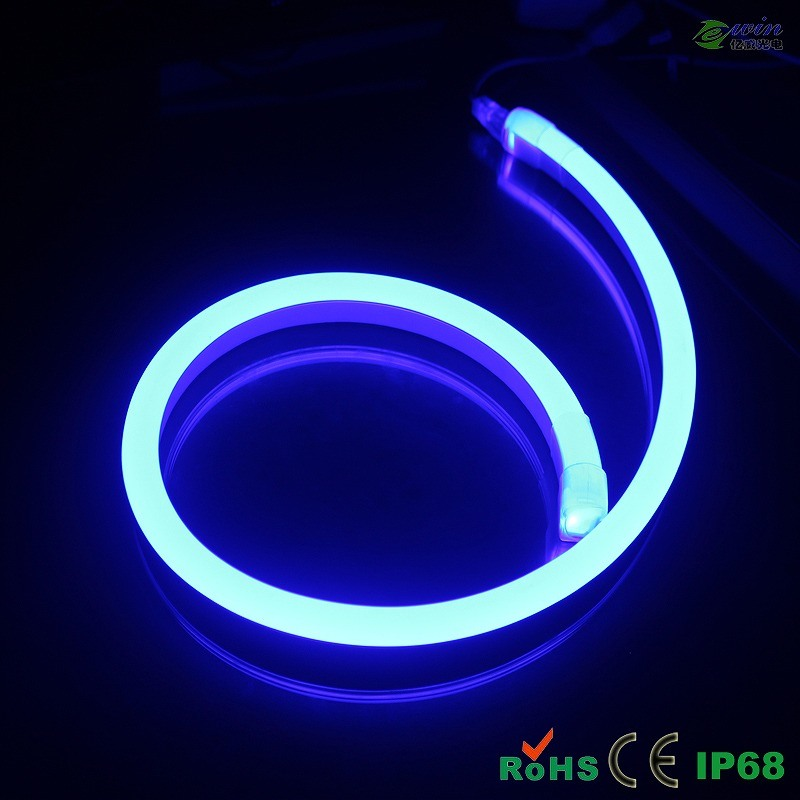 2 Wires 12V Single Color LED Lighting Neon with CE&RoHS