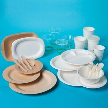 Disposable Biodegradable Sugarcane Plate