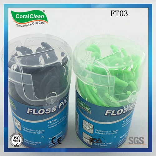 Personal Care Plastic Can Packing Dental Floss Toothpick