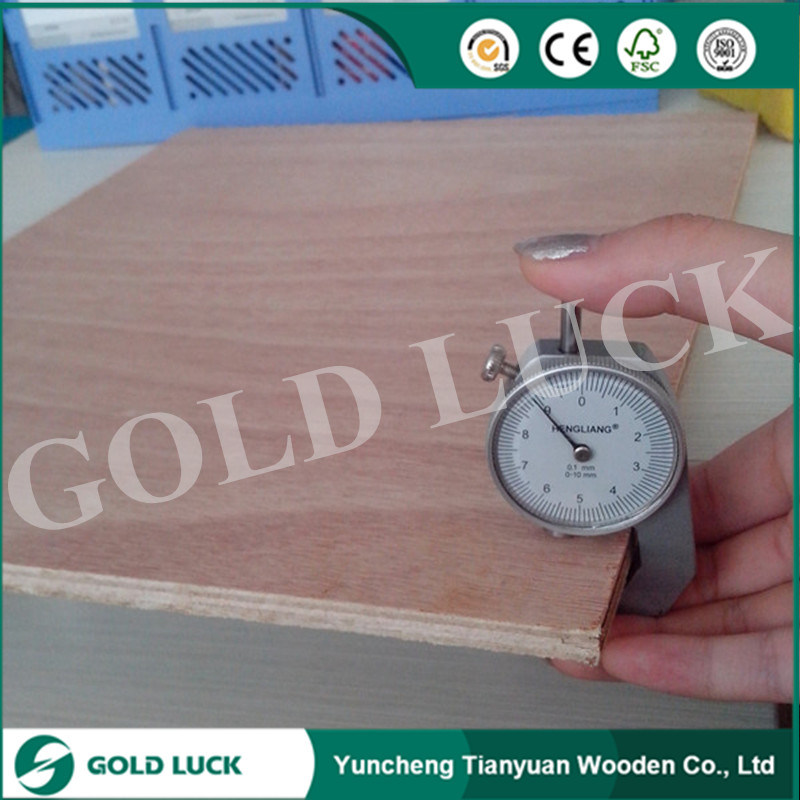 Red Meranti Faced Commercial Plywood
