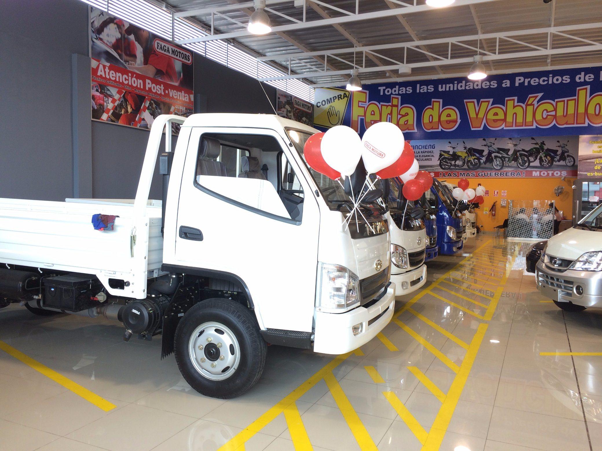 T-King 1 Ton Diesel Mini Truck, Light Truck, Cargo Truck