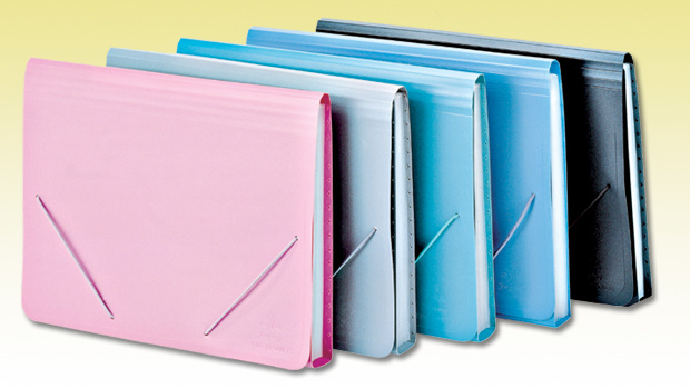 Expanding File Folder (NO. EF-011)
