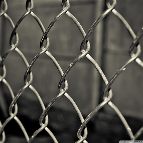 China Wholesale Virgin Chain Link Fence for Building Protection (SN)
