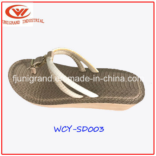 Fashion Women Slipper Wedge Sandals Shoes for Ladies