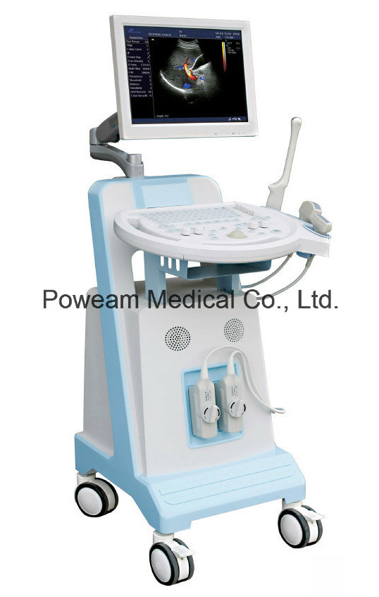 Hot Sell Ce Approved 2D 3D 4D Mobile Color Doppler Ultrasound (D30)