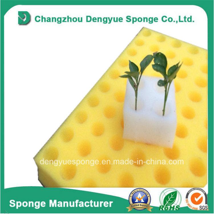 Ecological Agriculture Soilless Moisture Retain Dibble Holes Hydroponic Planting Sponge
