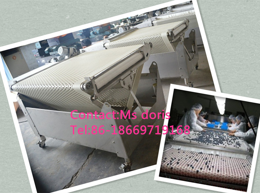 Industrial Professional Fruit Blueberry Sorting Machine