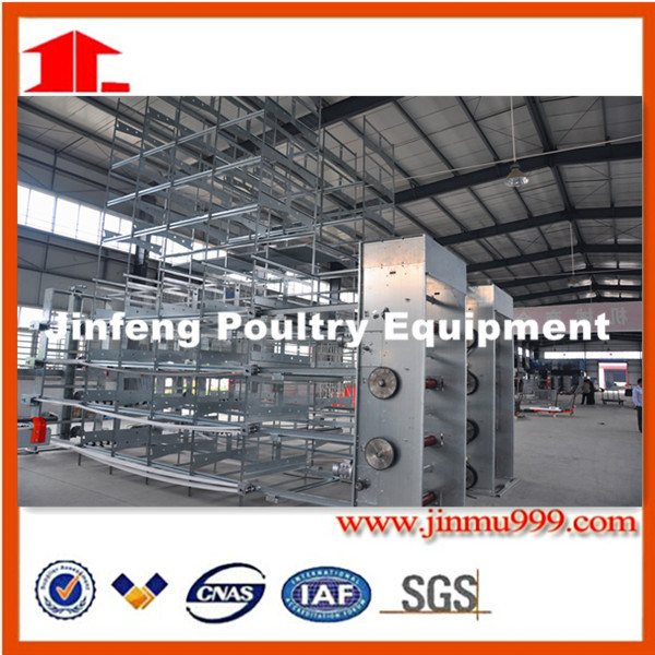 H Type Automatic Layer Chicken Poultry Equipment with Best Price