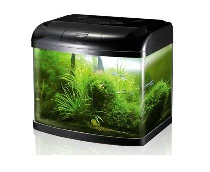 ... Filter Mini Fish Tank (T-40) - China Fish Tank, Aquarium Fish Tank