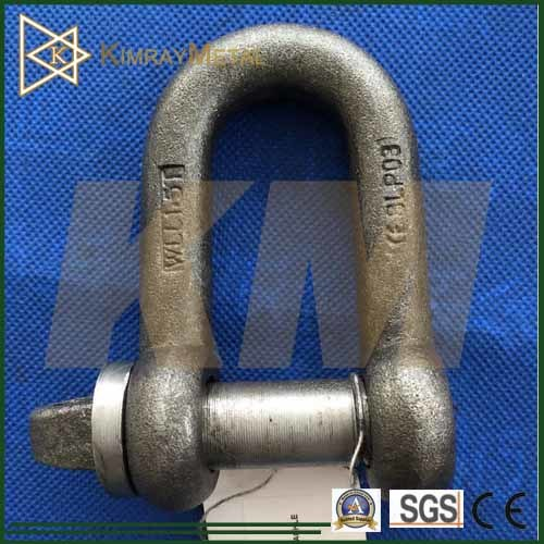 Bs 3032 Dee Shackle in Rigging Hardware