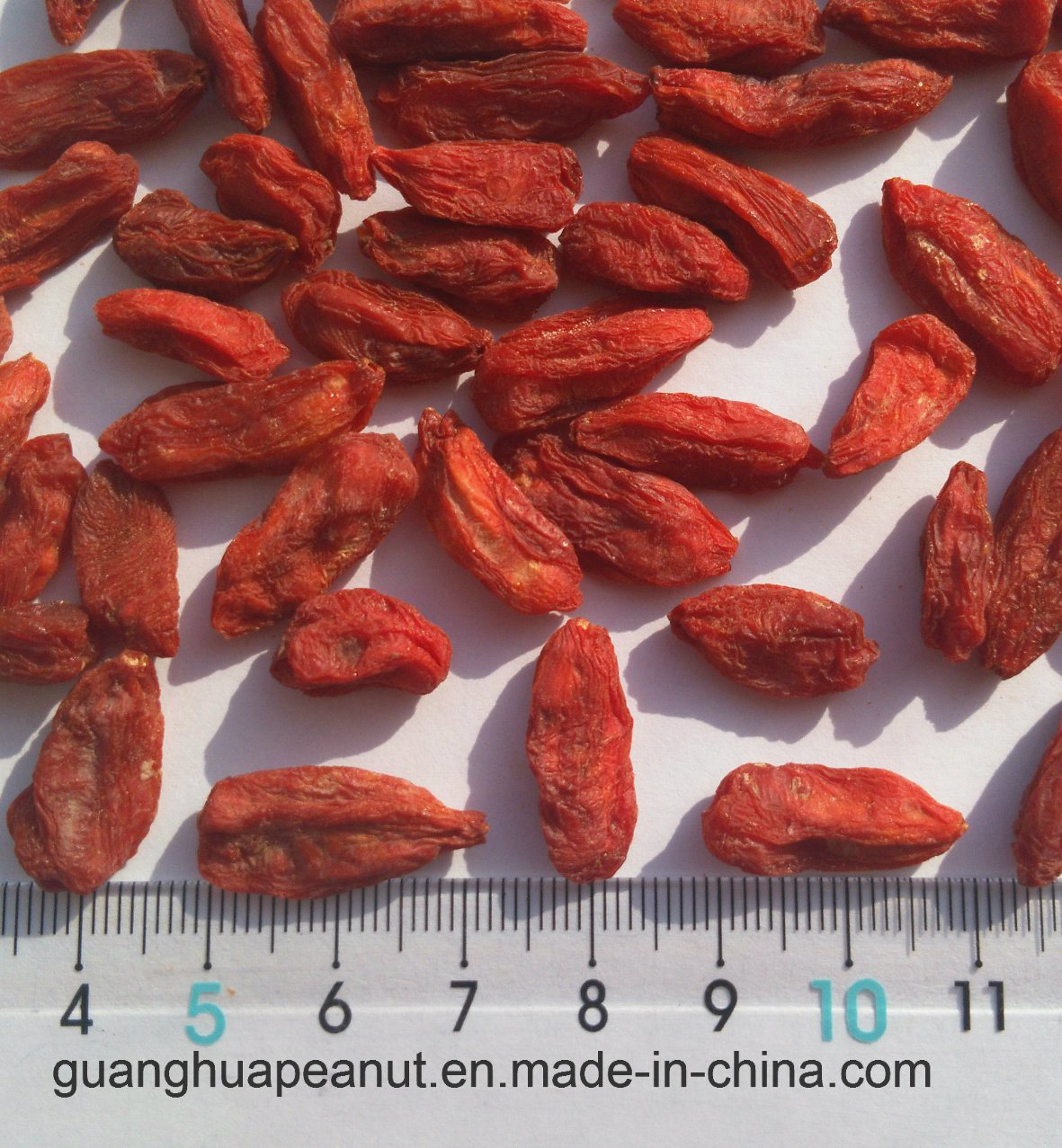 Best Quality Organic Dried Goji Berry