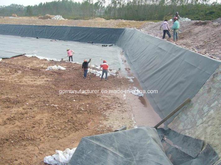Aging Resistance Black HDPE Geomembrane for Pond Liner with Suitable Price