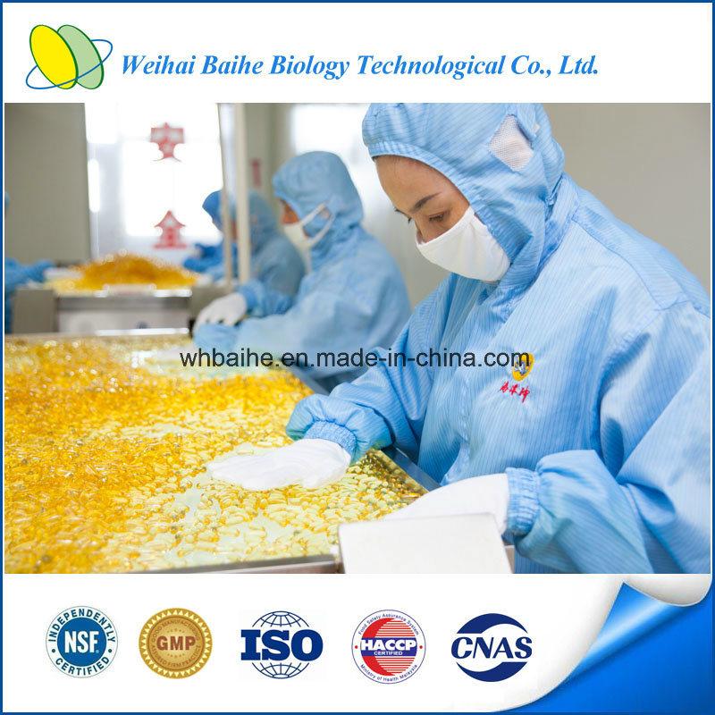 Hot Sale Dietary Supplement Krill Oil Softgel