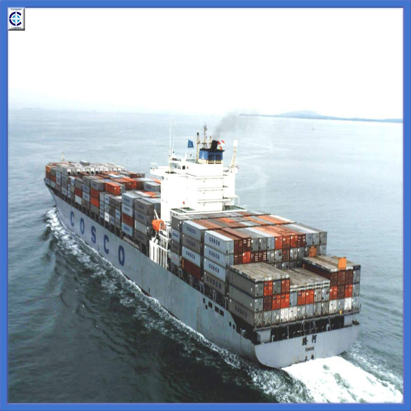Shipping Forwarding From Shanghai/Qingdao to Alexandria, Egypt (IC1-12)