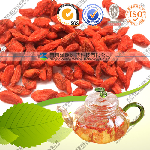 Ningxia Dried Goji Berry with Free Sample