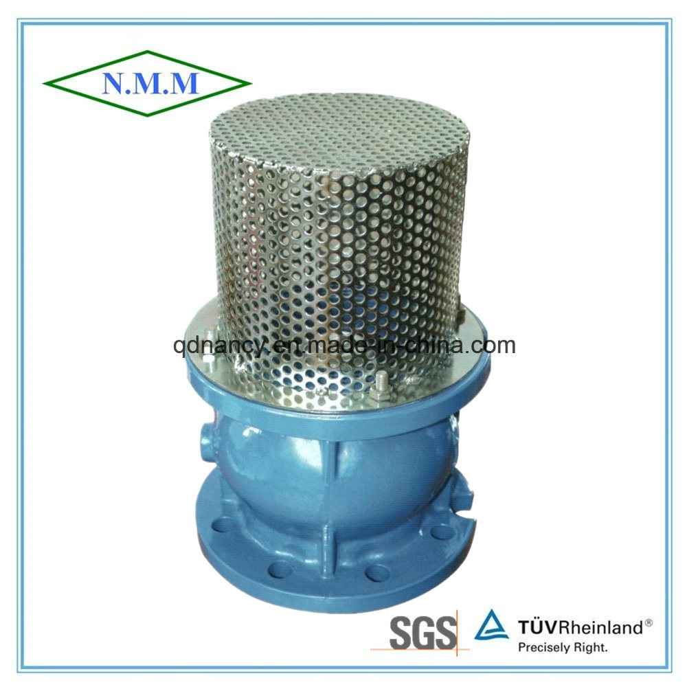 Cast Ductile Iron Flanged Foot Valve Pn16