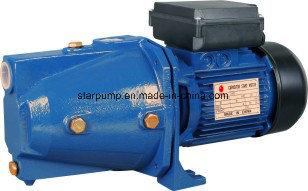 House Using 0.5HP Garden Jet Water Pump