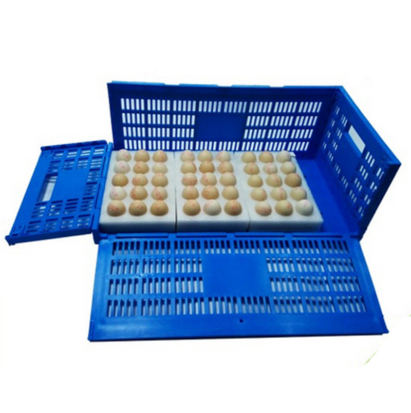 Foldable Plastic Crate Egg Crate