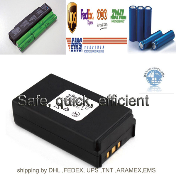 International Express for Battery (DHL, EMS, FedEx, UPS, Aramex, TNT)