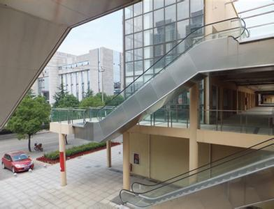 Bsdun Shopping Mall Escalator by China Supplier